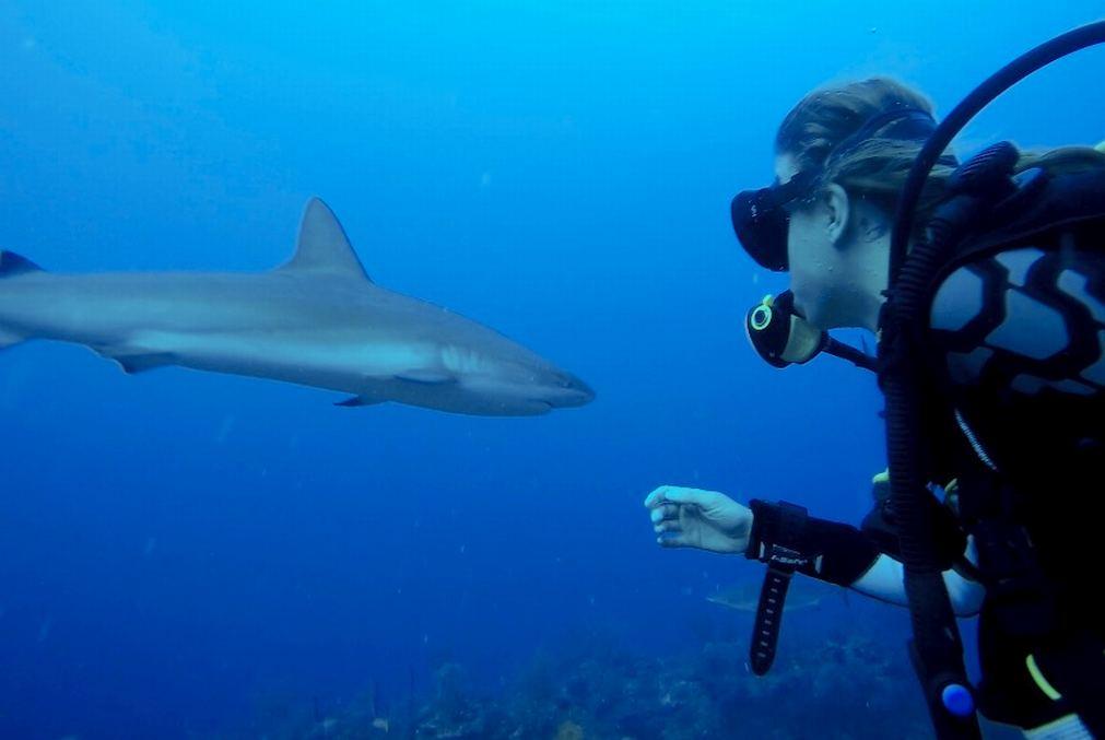 Anna Milerová a její projekt pomoci oceánům BE SEA