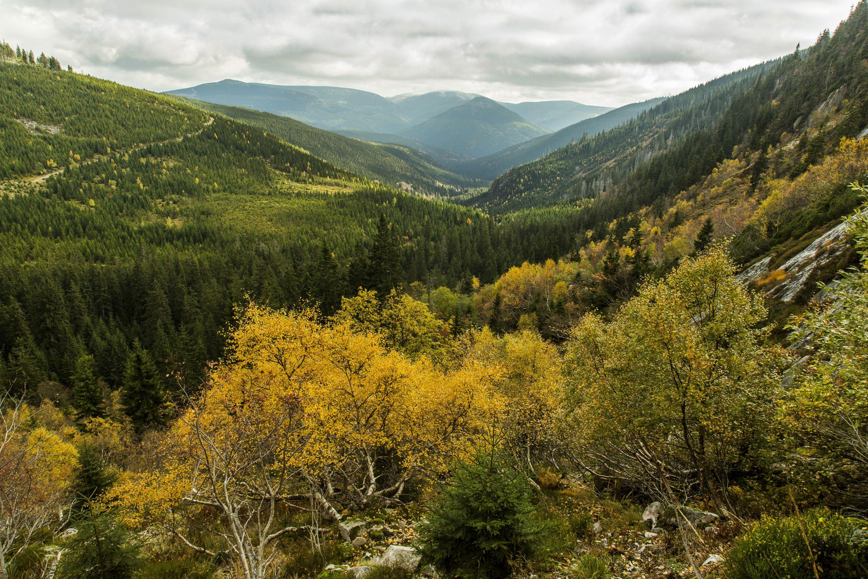 Labský důl, perla národního parku