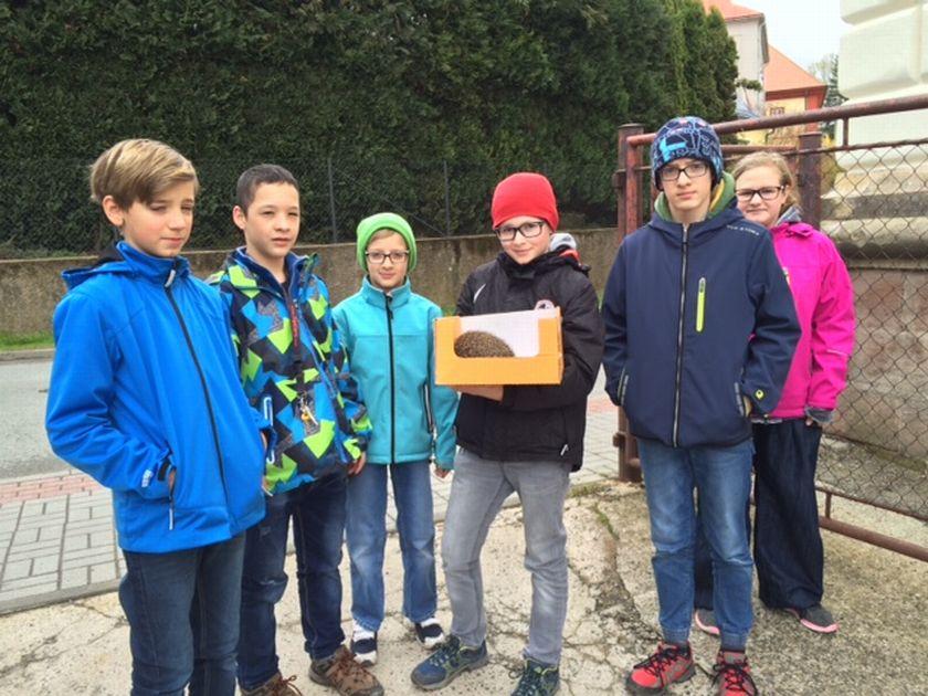Děti na Vrchlabsku se staraly celou zimu o ježka. Teď přišel čas vrátit ho do přírody