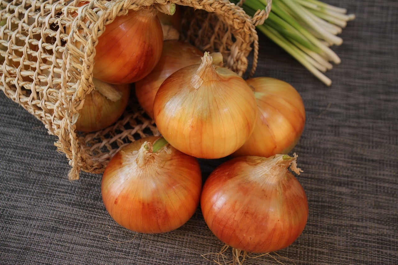 Cibule je nejen zdravá, ale také krásná (ilustrační foto)