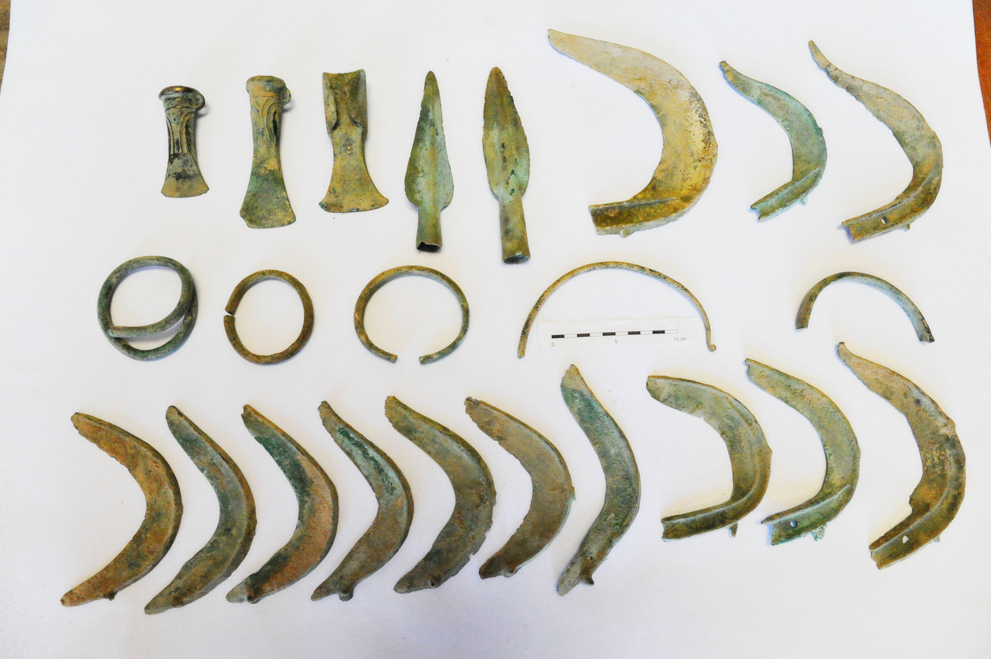 Pes našel unikátní archeologický nález z doby bronzové
