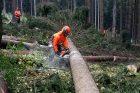 Česká lesnická akademie v Trutnově vychovává odborníky pro naši přírodu a lesy