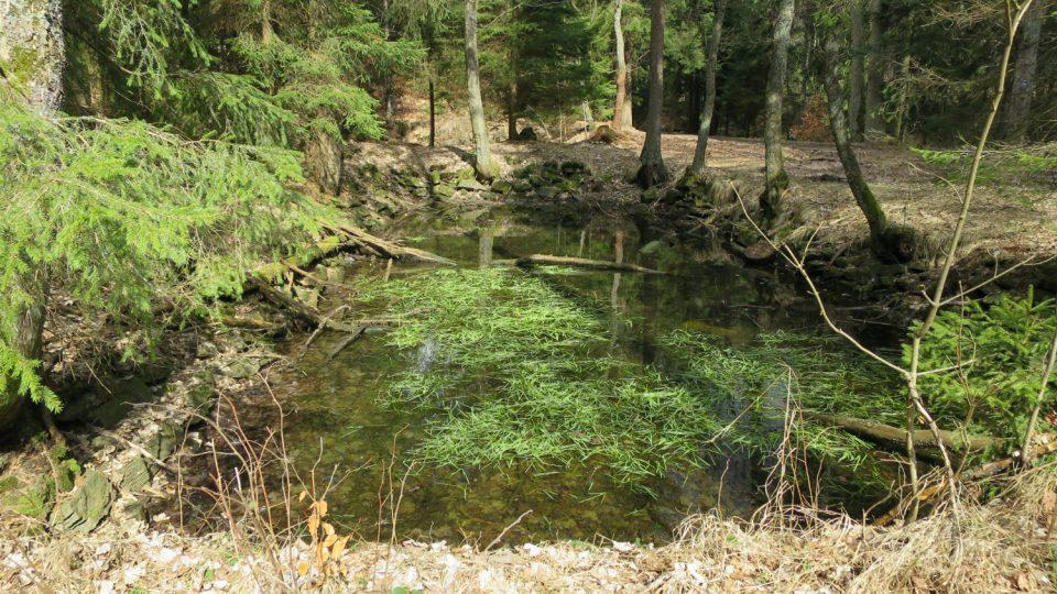 Na místech, kde kdysi stával lovecký zámeček Lusthaus, jsou dodnes patrné pstruhové rybníčky