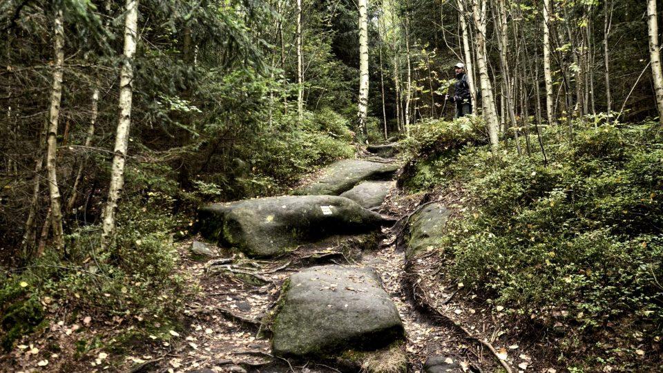 Cesta ke Kamenné bráně