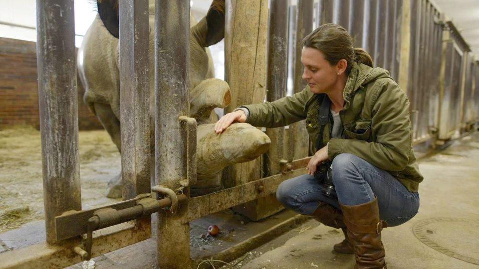 Režisérka filmu The Last Animals Kate Brooks se samicí Nabiré, posledním nosorožcem severním bílým v Evropě, v ZOO Dvůr Králové před tím, než Nabiré v roce 2015 uhynula