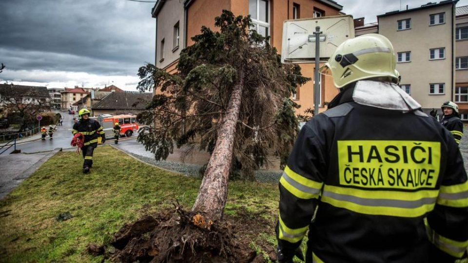 Odstraňování následků bouře Sabine v Královéhradeckém kraji