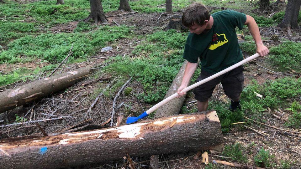 Skauti přijeli do Krkonoš a pomáhají Správě Krkonošského národního parku v boji s kůrovcem