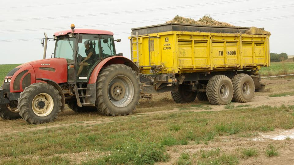 Cestou z pole do skladu v Zemědělském družstvu Všestary