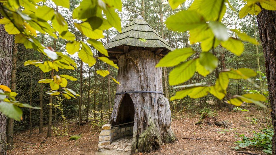 Městské lesy Hradec Králové pečují o přírodu v okolí krajské metropole