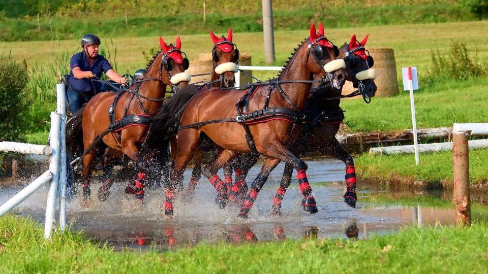 Kdo to jednou zkusil s dvěma a přešel ke čtyřem koním, tak už od vozatajství neodejde
