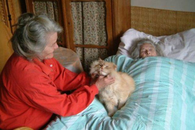 Pacientka hospicu Cesta domů