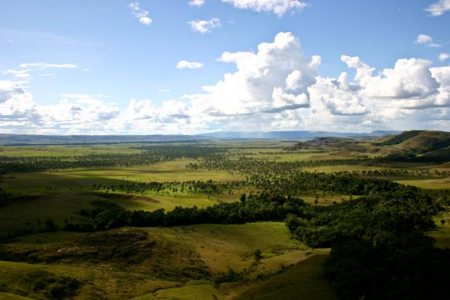 La Gran Sabana - oblast Llanos ve Venezuele   foto:  Wikipedia,   Inti