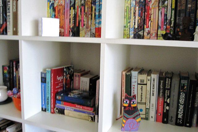 knihovna, knihy, knížky
