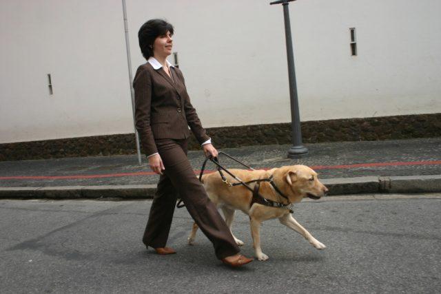 Nevidomá žena | foto: Stock Exchange