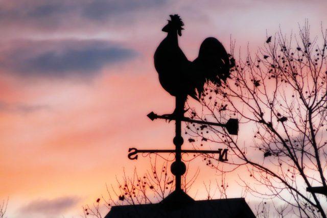 Dobré ráno | foto: Fotobanka stock.xchng