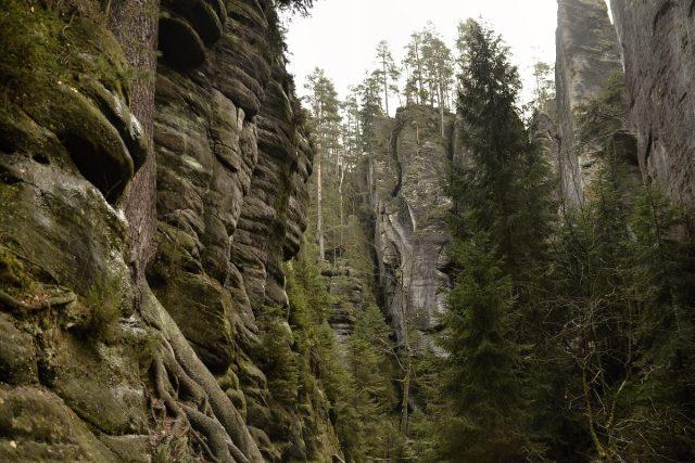 Vlčí roklí lze projít mezi Adršpašskými a Teplickými skalami
