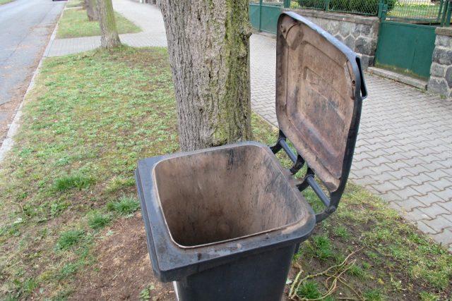 Kompostováním nebo tříděním bioodpadu ušetříte místo v popelnici na směsný odpad   foto: Pavel Halla