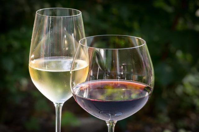 Víno bílé i červené