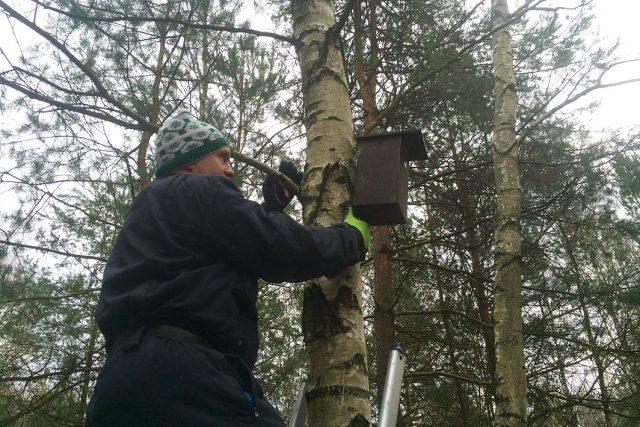 O 1500 budek pro ptáky se v královéhradeckých městských lesích stará ornitolog Miroslav Dusík