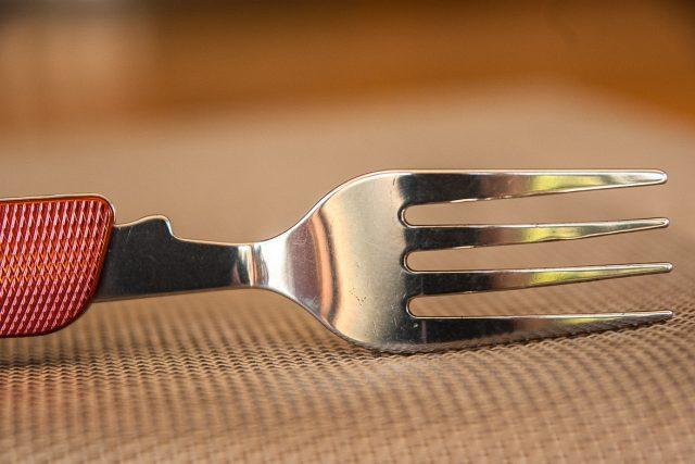 Vidlička  (ilustrační foto) | foto: Fotobanka Pixabay
