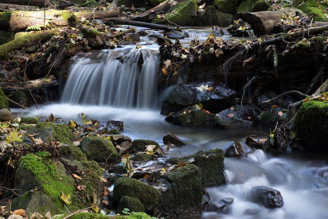 Potoky naši krajinu zkrášlují. Ubývá v nich ale voda? (ilustrační foto)