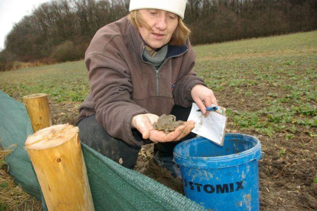 Přírodovědkyně Petra Zíková při přenosu žab