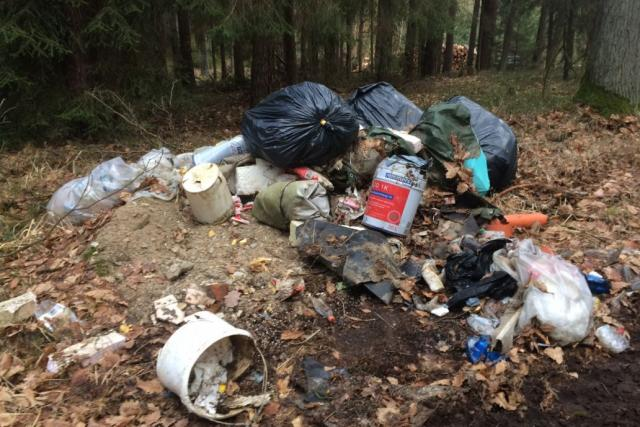 Nekonečný příběh - tak mluví o úklidu odpadků z příkopů a likvidaci černých skládek silničáři a lesníci