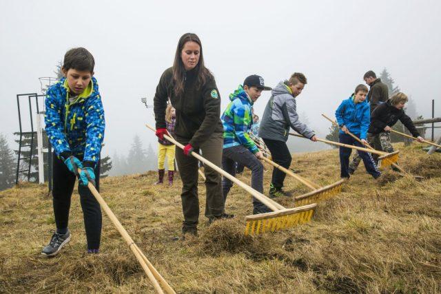 Někteří žáci na Vrchlabsku vzali místo učebnic do rukou hrábě a vyrazili na krkonošské louky