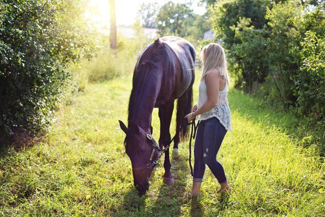 Koně, to je láska na celý život