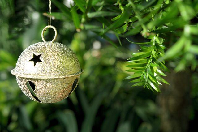 Vánoce,  rolnička   foto: Pixabay