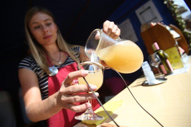 Pálavské vinobraní | foto: Anna Vavríková,  MAFRA / Profimedia