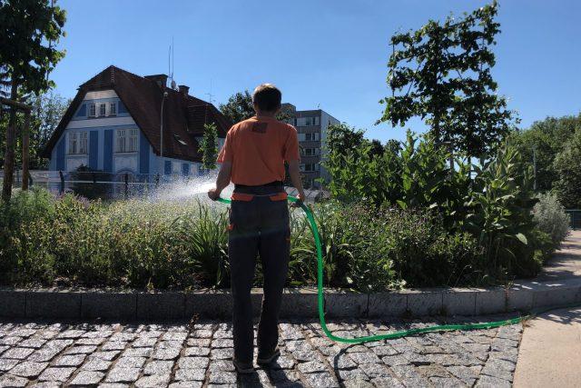 Ve Vrchlabí zalévají denně městskou zeleň