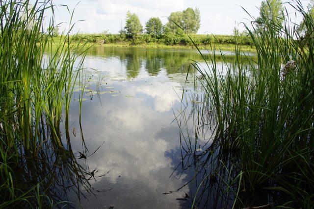 Nechceme mít jen krajinný plán,  ale obnovit malý vodní režim republiky,  říká ekolog Jiří Malík  (ilustrační foto) | foto: Fotobanka Pixabay