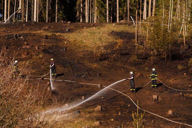 Požárů v přírodním prostředí přibývá