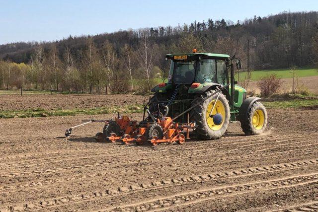 Jaký má letošní počasí vliv na zemědělství? Opozdí se sklizeň plodin?  (ilustrační foto) | foto: Jitka Cibulová Vokatá,  Český rozhlas,  Český rozhlas