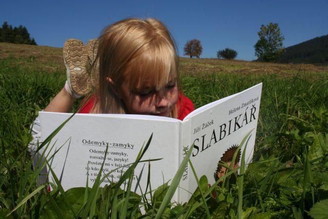 čtení, četba, slabikář, prázdniny, kniha, český jazyk, pohoda, dítě, dívka, louka