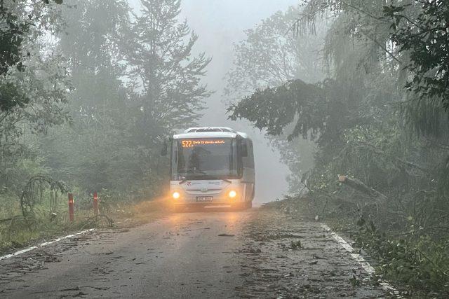 Bouře v Královéhradeckém kraji lámala stromy,  hasiči měli 120 výjezdů | foto: Martin Pařízek,  Český rozhlas