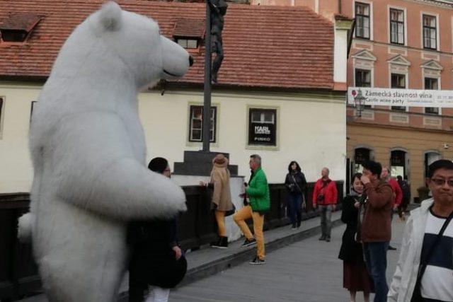Člověk v kostýmu ledního medvěda na Lazebnickém mostě v Českém Krumlově