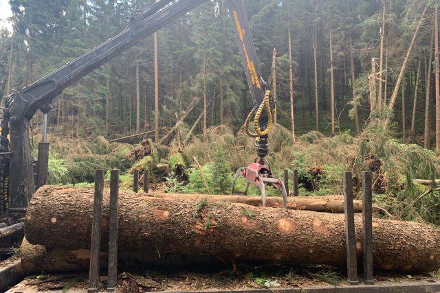 Po středeční noční bouři je zejména v západních Krkonoších vážně poškozena řada lesních porostů | foto: Správa Krkonošského národního parku