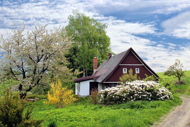 Zahrada je radost a potěšení, ale také práce a zkušenosti (ilustrační foto)