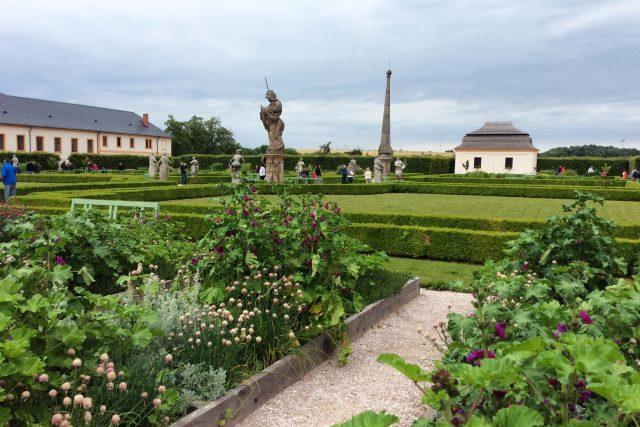 Bylinková zahrada v areálu hospitálu na Kuksu