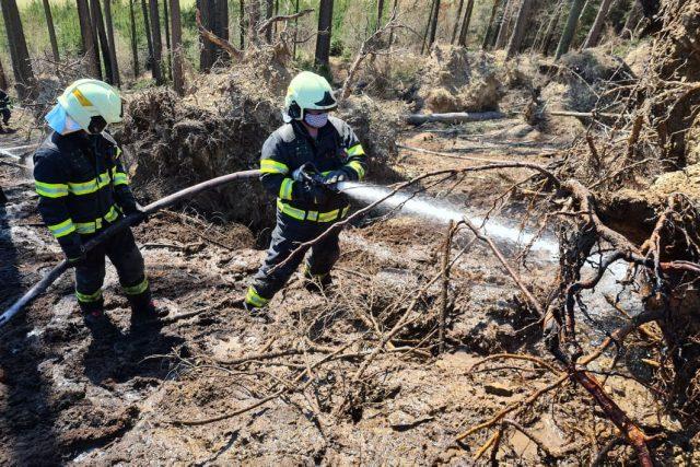 Rady hasičů, jak nezpůsobit požár v přírodě a neohrozit sebe ani ostatní
