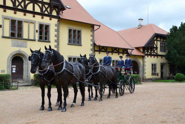 Starokladrubští koně se chovají přes půl tisíciletí | foto: Národní hřebčín Kladruby nad Labem