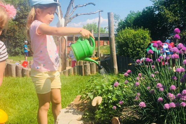 Děti z mateřské školy Lipnice u Dvora Králové si pěstují na vlastní zahrádce jahody a bylinky