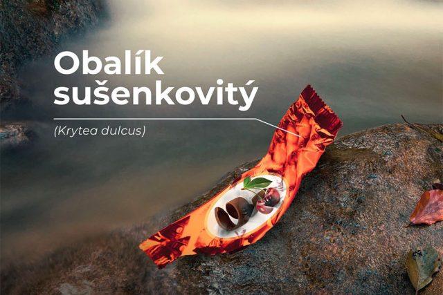 Obalík sušenkovitý - startuje kampaň Není zvěř jako zvěř
