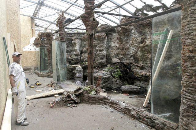 Největší prostory nejstaršího pavilonu Safari Parku Dvůr Králové právě procházejí změnami