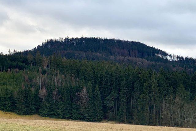 Stolová hora Ostaš v Broumovské vrchovině přijde kvůli kůrovci o podstatnou část svých stromů