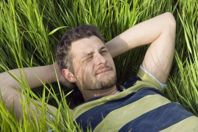 Ležet v trávě