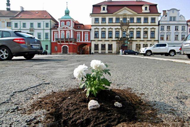 Květiny uprostřed parkoviště na Velkém náměstí v Hradci Králové