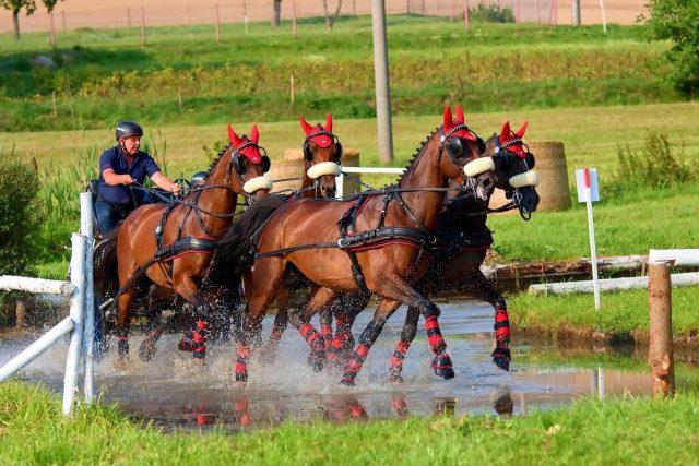 Kdo to jednou zkusil s dvěma a přešel ke čtyřem koním,  tak už od vozatajství neodejde | foto: Marcel Runštuk